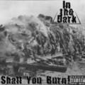 In the Dark выпустили сингл
