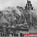 In The Dark / Shall You Burn / 2010 (Single)