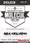 Molecul в Туле