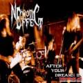 Necrotic Effect готовит полноформатный альбом